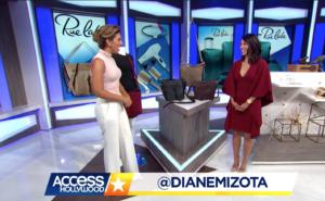Diane Mizota on Access Hollywood